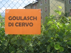 stag goulash advertised in Rovereto. Northern Italy