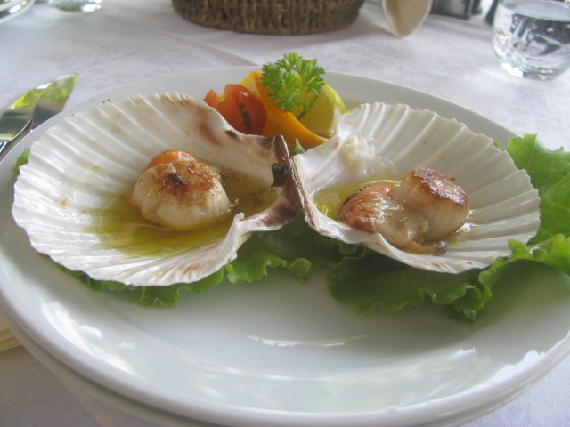 "Grilled "" Capesante"" (scallops) - All rights incl. electr. Culinary Roots and Recipes 2016"