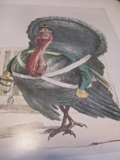 Milanese caricature of the turkeyld